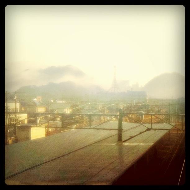 雨上がりの朝♪